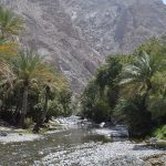 Travel with Oman Motor Homes